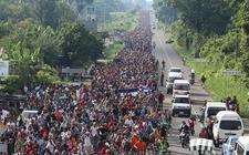 Images_144824_thumb_migrantes-centroamericanos-milenio_0_0_492_306