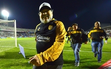 Images_158891_thumb_diego-maradona-actual-director-tecnico_0_26_1024_637