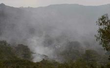Images_159450_thumb_incendio-generado-dano-mil-hectareas_0_1_1280_796