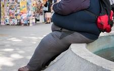 Images_169022_thumb_gravamenes-contra-la-obesidad-generan_0_17_640_399