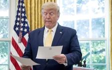 Images_169120_thumb_donald-trump-anunciado-visa-inmigrante_0_3_958_595