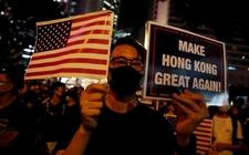 Images_169150_thumb_manifestantes-instaban-representantes-electos-estadunidenses-1_0_2_800_498