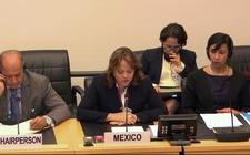Images_169265_thumb_martha-delgado-subsecretaria-asuntos-multilaterales-2