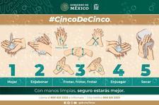 Images_178108_thumb_2669-lavado_de_manos__cincodecinco_infografia