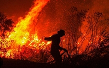 Images_188080_thumb_indonesia-bombero-busca-extinguir-incendio